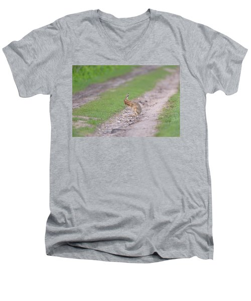 Brown Hare Cleaning Men's V-Neck T-Shirt