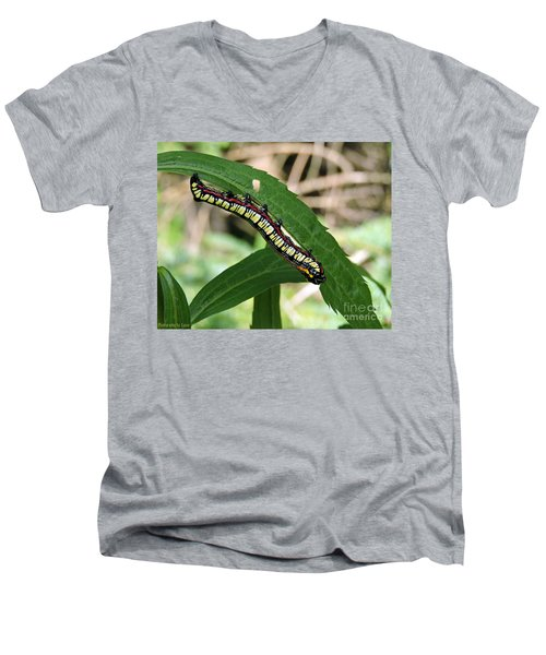 Brown Hooded Owlet Moth Larva  Men's V-Neck T-Shirt