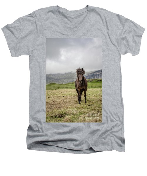 Men's V-Neck T-Shirt featuring the photograph Brown Icelandic Horse by Edward Fielding