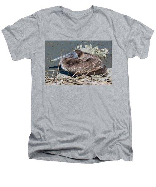Brown Pelican 3 March 2018 Men's V-Neck T-Shirt