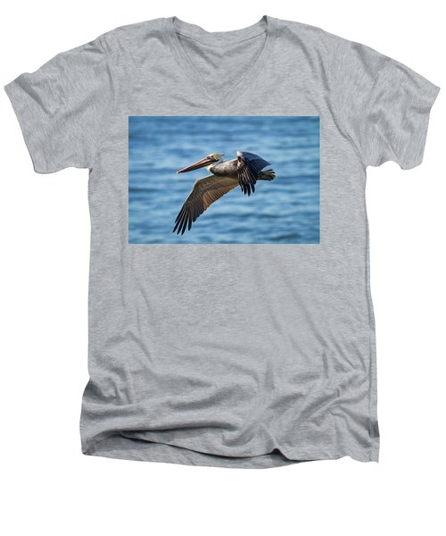 Brown Pelican In Flight Men's V-Neck T-Shirt