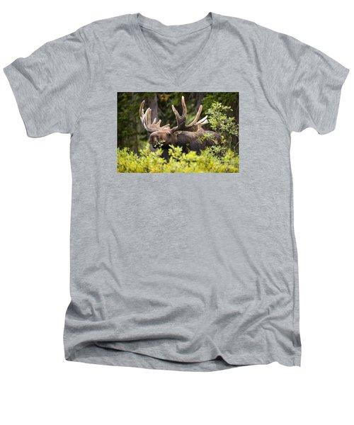 Browser Men's V-Neck T-Shirt