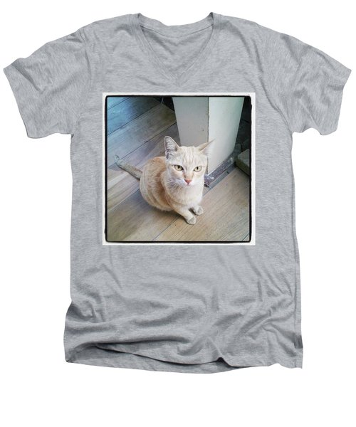 Men's V-Neck T-Shirt featuring the photograph Brunch Companion. I Couldn't Resist by Mr Photojimsf