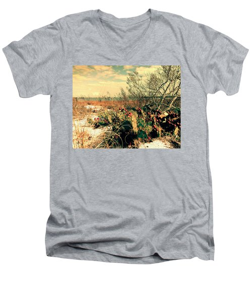 Brush Work Men's V-Neck T-Shirt