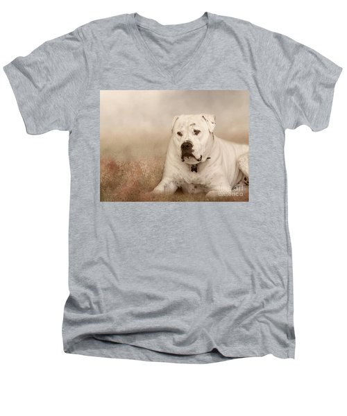 Brutus Dreaming Men's V-Neck T-Shirt by Elaine Teague