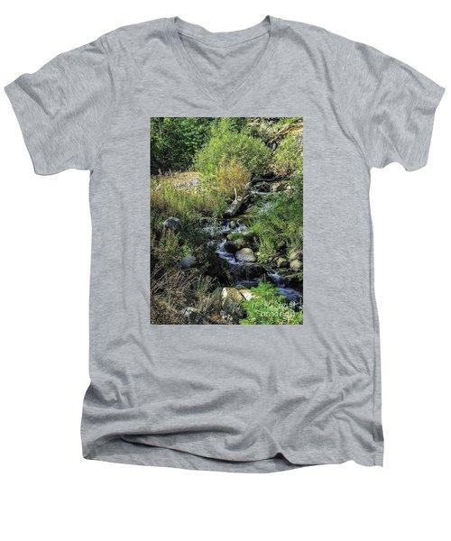 Bubbling Brook Men's V-Neck T-Shirt
