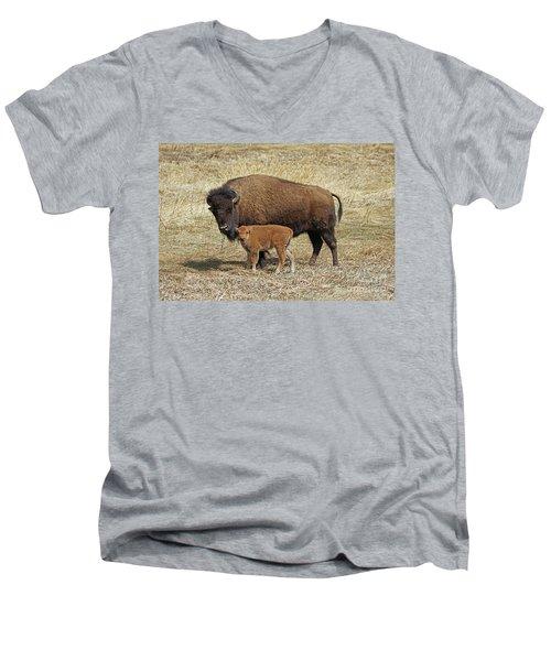 Buffalo With Newborn Calf Men's V-Neck T-Shirt
