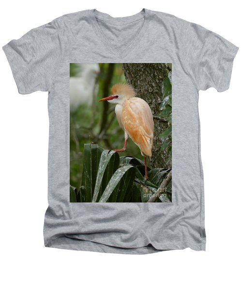 Buffy - The Cattle Egret Men's V-Neck T-Shirt