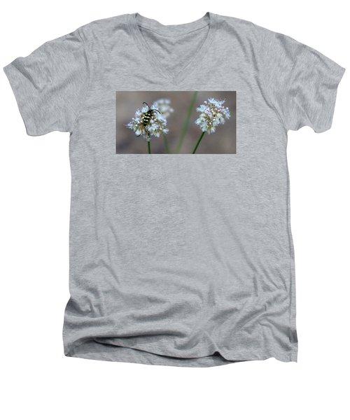 Bug On Flower Men's V-Neck T-Shirt