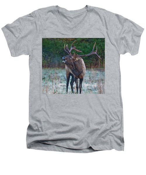 Bugling Elk Men's V-Neck T-Shirt