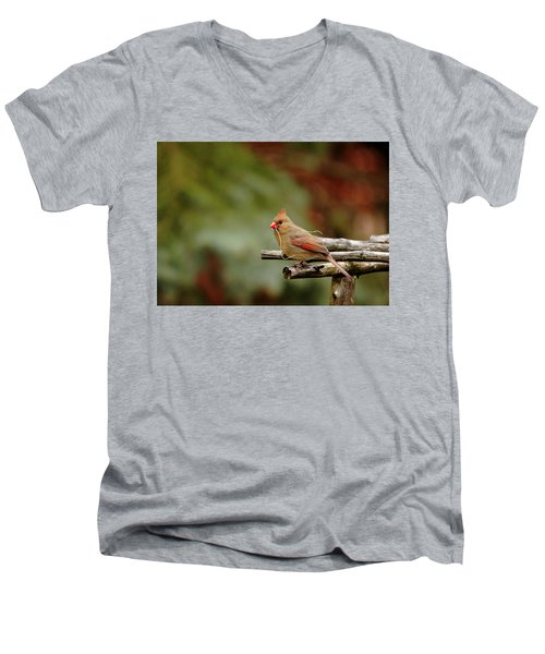 Men's V-Neck T-Shirt featuring the photograph Building A Home by Debbie Oppermann