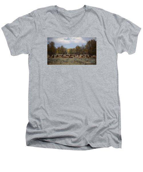 Bull Elk And Harem Men's V-Neck T-Shirt