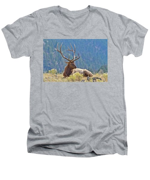 Men's V-Neck T-Shirt featuring the photograph Bull Elk Resting by Wesley Aston