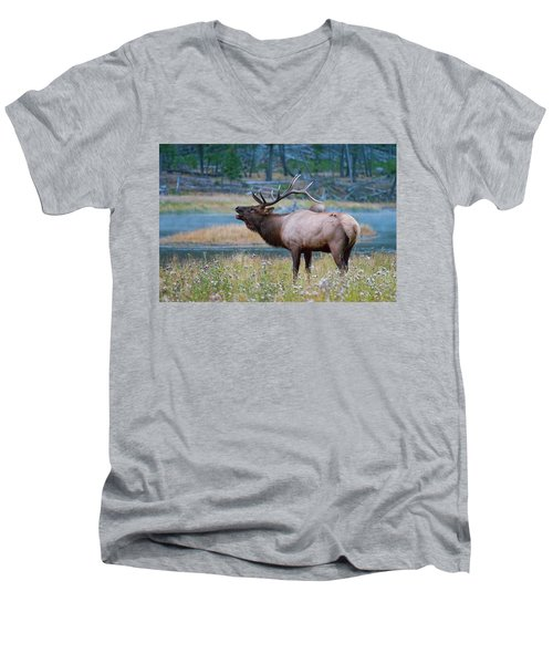 Men's V-Neck T-Shirt featuring the photograph Bull Elk by Wesley Aston