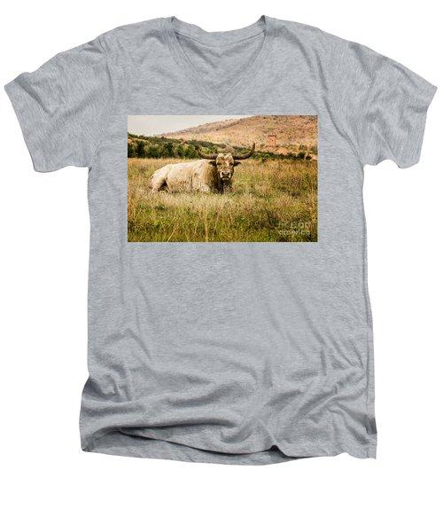 Bull Longhorn Men's V-Neck T-Shirt