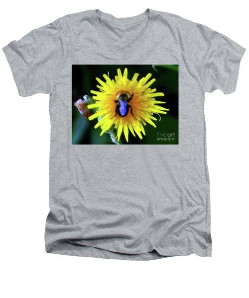Men's V-Neck T-Shirt featuring the photograph Bullseye Bumblebee Dandelion by Rockin Docks Deluxephotos