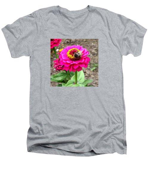 Bumble Bee On Pink Flower Men's V-Neck T-Shirt