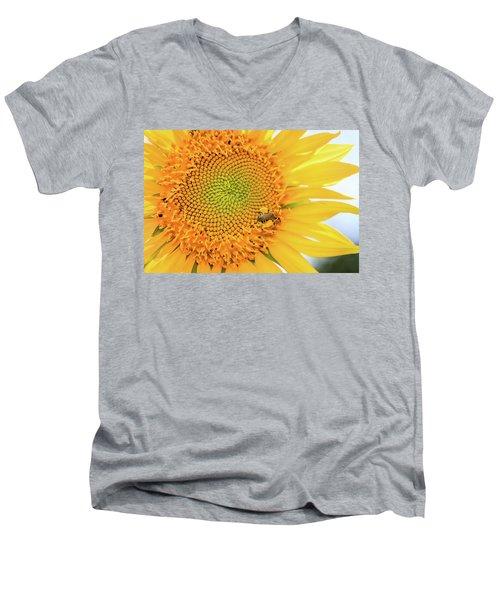 Bumble Bee With Pollen Sacs Men's V-Neck T-Shirt