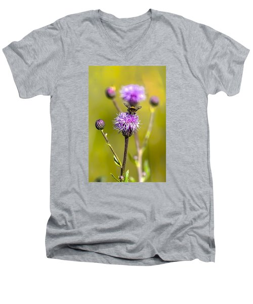 Men's V-Neck T-Shirt featuring the photograph Bumblebee Aug 2015 by Leif Sohlman