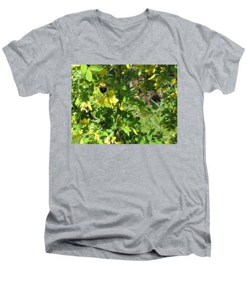 Bumblebee In Flight In Yellow Flowers Men's V-Neck T-Shirt by Barbara Yearty