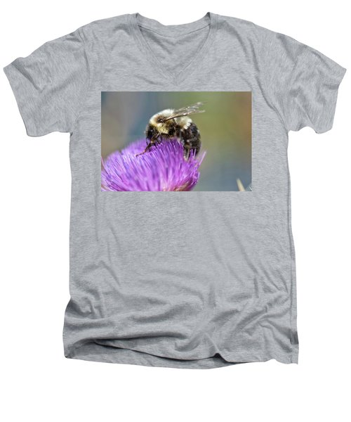 Bumblebee Men's V-Neck T-Shirt by Nikki McInnes