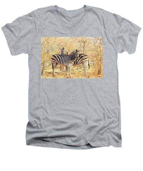 Burchells Zebras Men's V-Neck T-Shirt by Betty-Anne McDonald