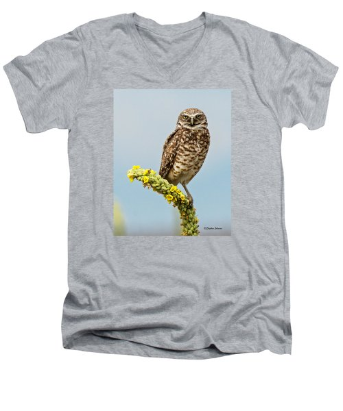 Burrowing Owl On Mullein Plant Men's V-Neck T-Shirt