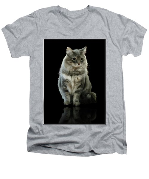 Bustopher Jones Men's V-Neck T-Shirt