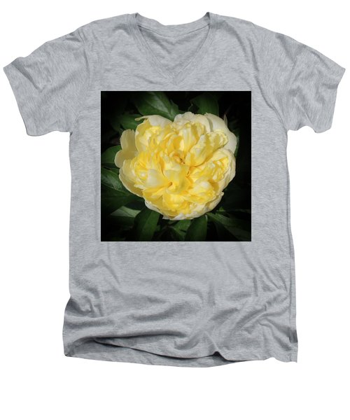 Buttercream Peony Men's V-Neck T-Shirt