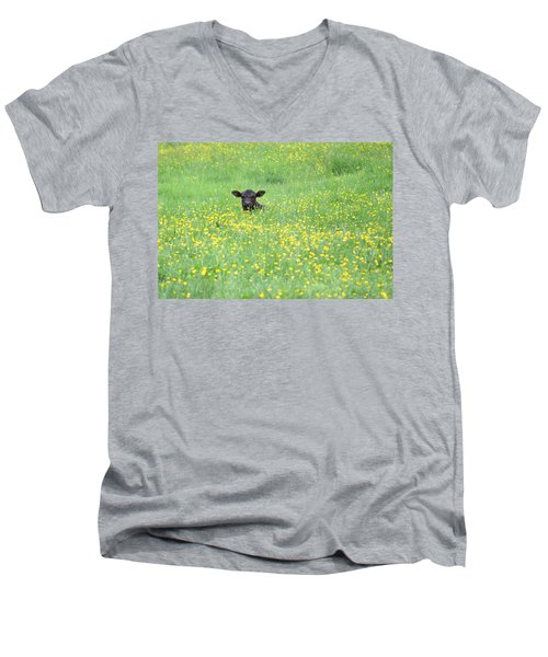 Buttercup Men's V-Neck T-Shirt