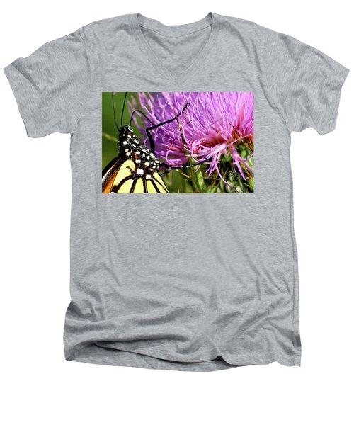 Butterfly On Bull Thistle Men's V-Neck T-Shirt