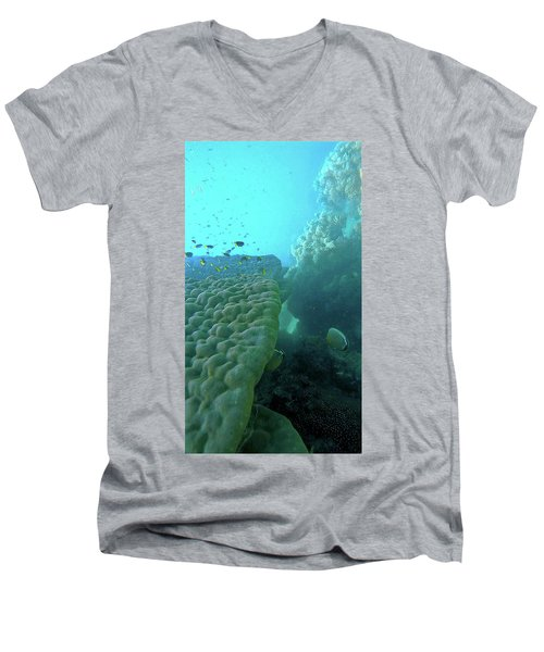 Butterfly Fish  Men's V-Neck T-Shirt