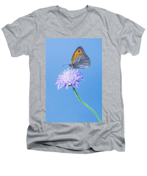 Butterfly Men's V-Neck T-Shirt by Jaroslaw Grudzinski