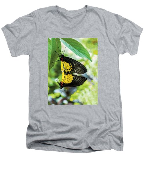 Butterfly Mating Men's V-Neck T-Shirt