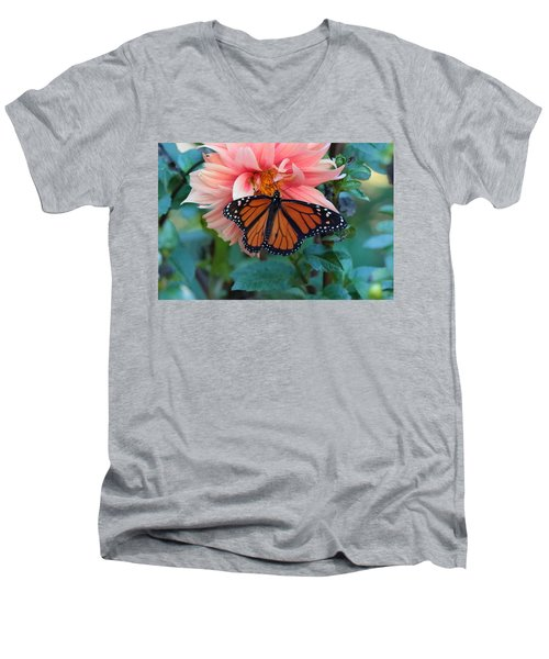 Butterfly On Dahlia Men's V-Neck T-Shirt