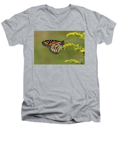 Butterfly On Flowers Men's V-Neck T-Shirt