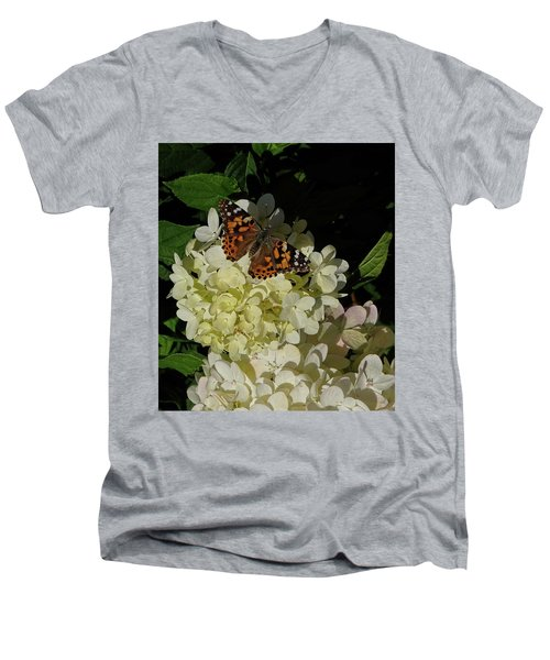 Butterfly On Hydrangea Men's V-Neck T-Shirt