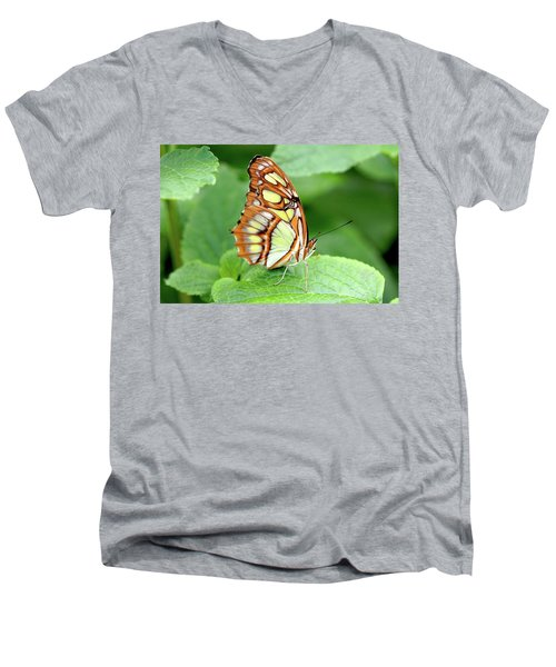 Butterfly On Leaf Men's V-Neck T-Shirt by Meta Gatschenberger
