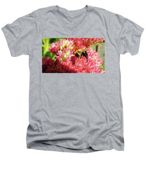 Buzy Bee Men's V-Neck T-Shirt