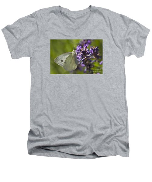 Men's V-Neck T-Shirt featuring the photograph Cabbage White Butterfly by Inge Riis McDonald