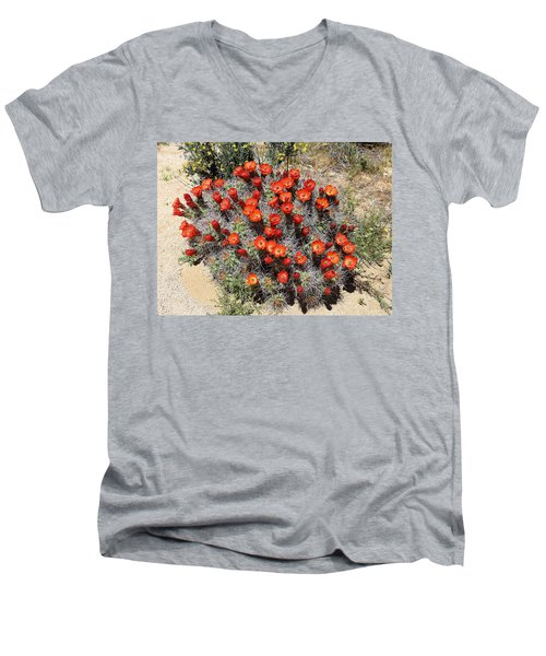Men's V-Neck T-Shirt featuring the photograph Cactus Bloom In Jtnp by Viktor Savchenko