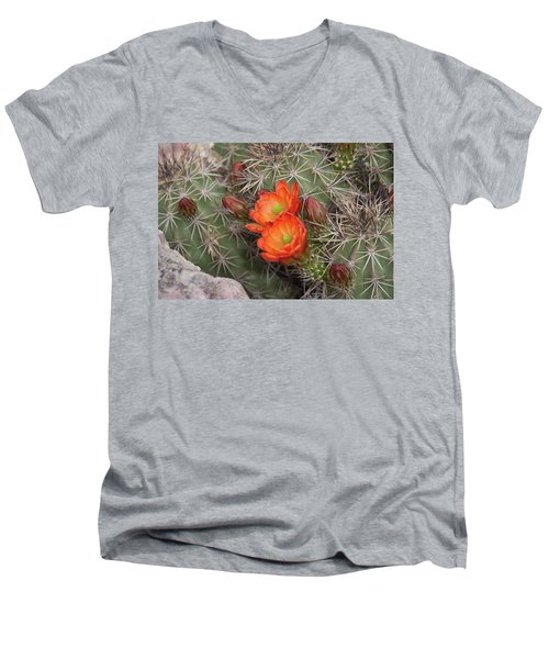 Cactus Blossoms Men's V-Neck T-Shirt by Monte Stevens