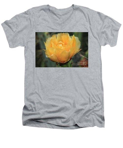 Cactus Flower 2016   Men's V-Neck T-Shirt by Toma Caul