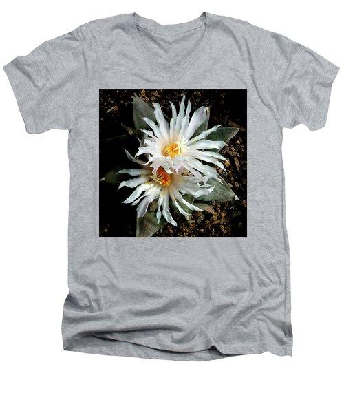 Cactus Flower 7 2 Men's V-Neck T-Shirt