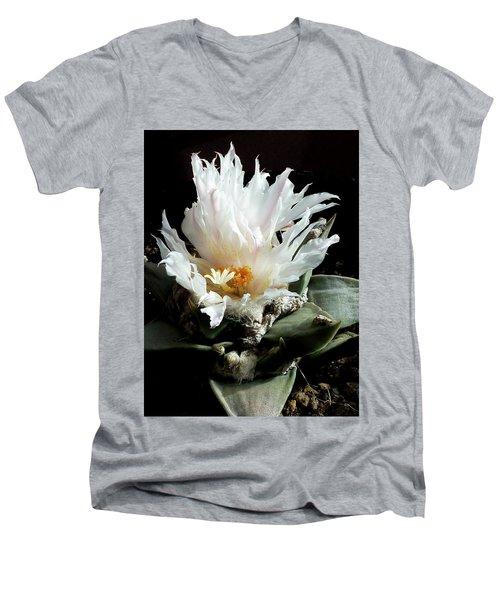 Cactus Flower 8 Men's V-Neck T-Shirt