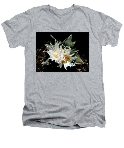 Cactus Flower 9 2 Men's V-Neck T-Shirt