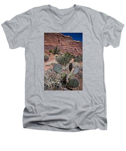 Cactus In Arches Nat'l Park Men's V-Neck T-Shirt