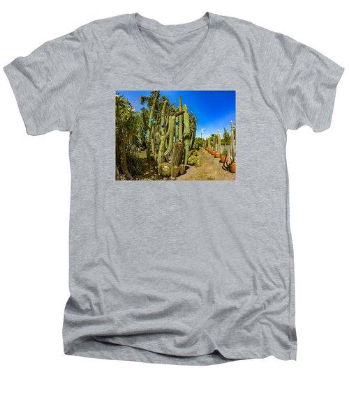 Cactus Street Men's V-Neck T-Shirt