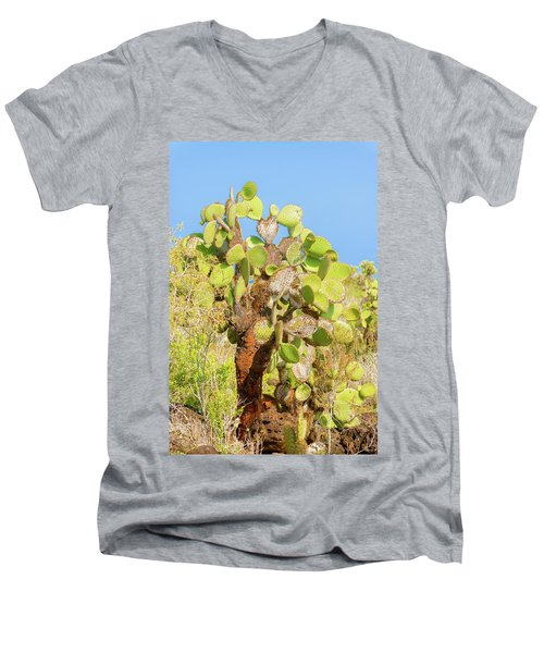 Men's V-Neck T-Shirt featuring the photograph Cactus Trees In Galapagos Islands by Marek Poplawski
