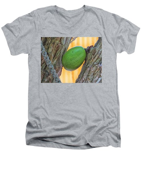 Calabash Fruit Men's V-Neck T-Shirt